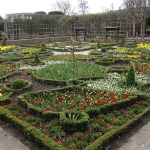 SBT New Place Knot Garden