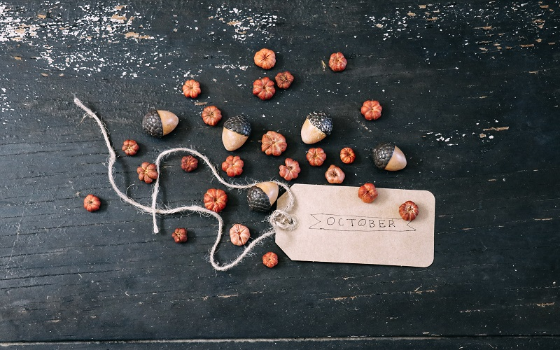 assorted pumpkins and brown product tag